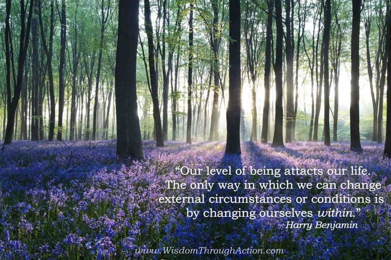 Our Being Attracts our Life